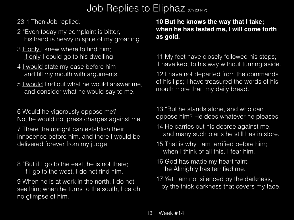 Book of Job, Raz, Week #14.013