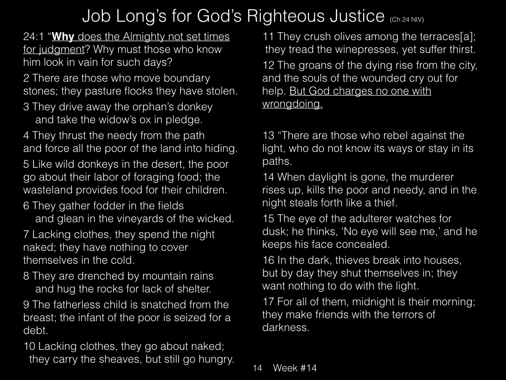 Book of Job, Raz, Week #14.014
