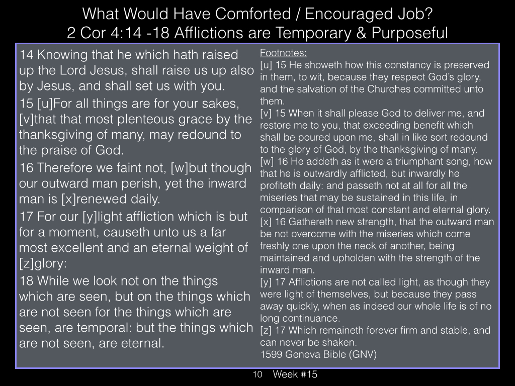 Book of Job, Raz, Week #15.010