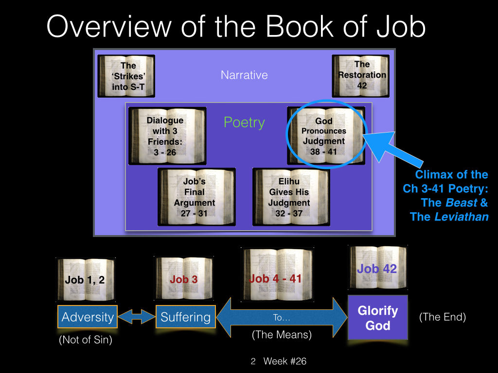 Book of Job, Raz, Week #26.002