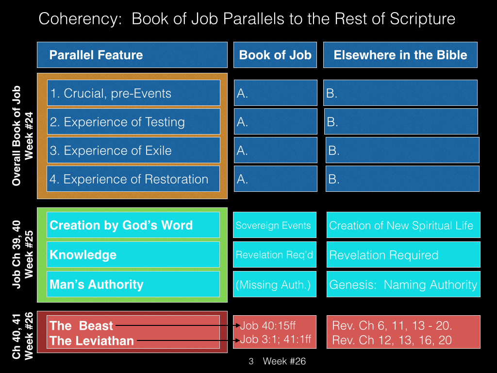 Book of Job, Raz, Week #26.003
