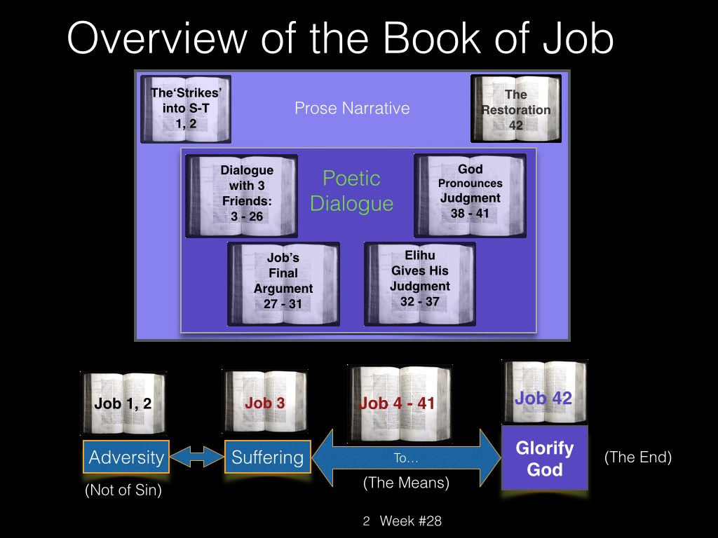 Book of Job, Raz, Week #28.002