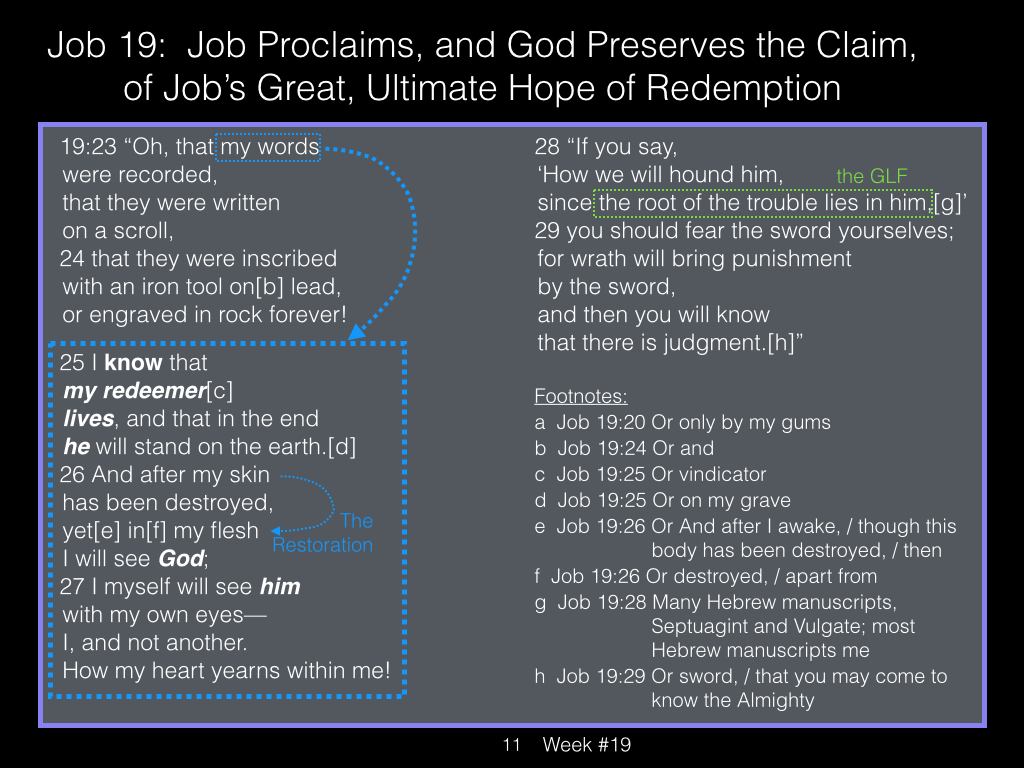 Book of Job, Week #19 LB.011
