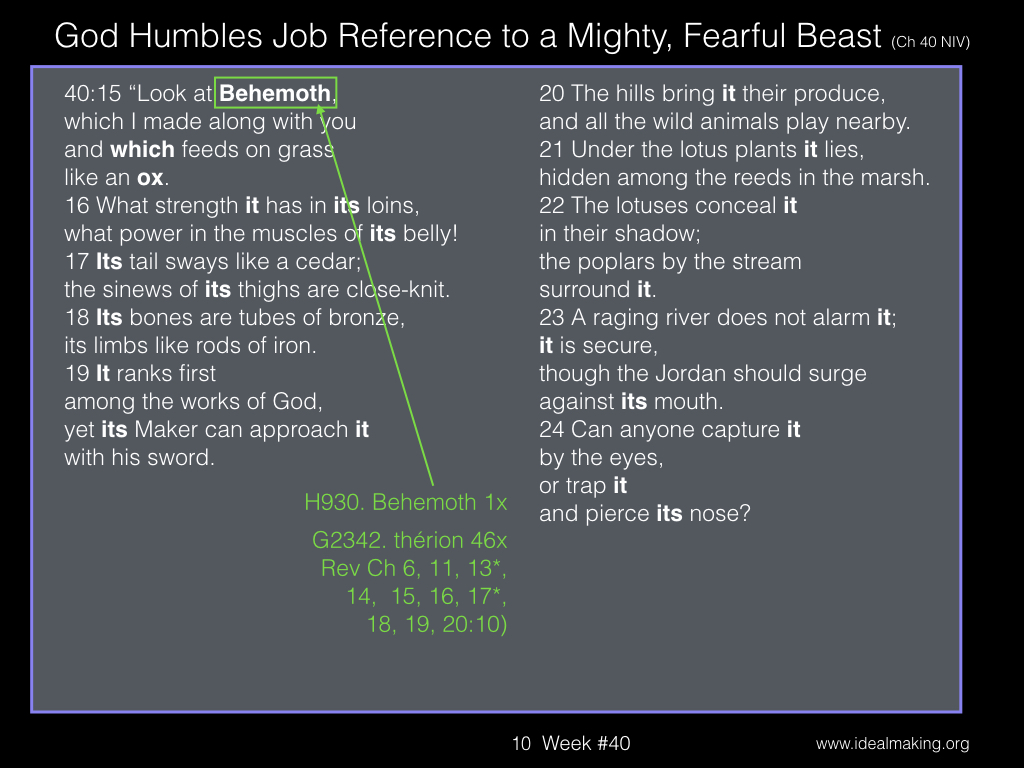 Book of Job, Week #40B.010